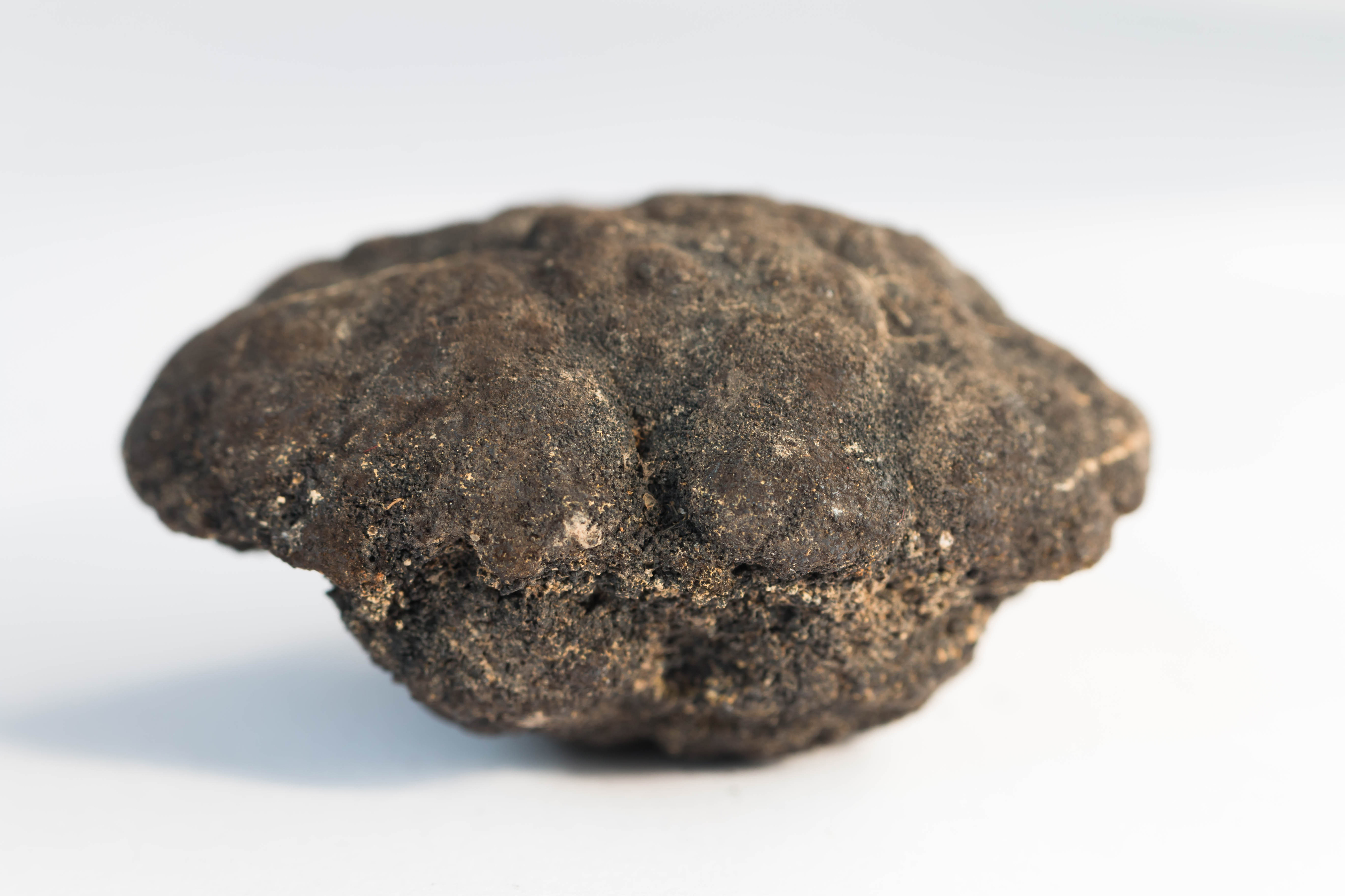 Polymetallic nodules from 5000m depth of Pacific ocean
